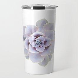 Echeveria perle von nurnberg Travel Mug