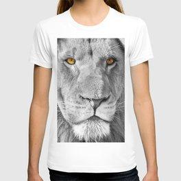 Lion Male Portrait CK T-shirt