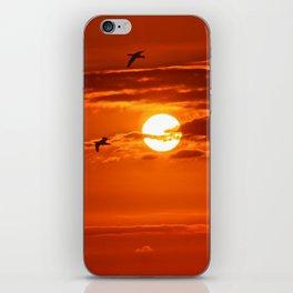 Red Sunset2 False Bay iPhone Skin