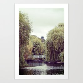 Park Bridge. Art Print