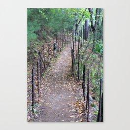 Walden Pond Trail 3 Canvas Print