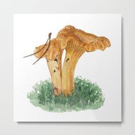 Chanterelle mushroom in watercolor Metal Print