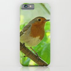 Robin in the bushes iPhone 6s Slim Case