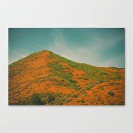 California Poppies 029 Canvas Print