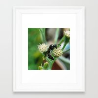insect Framed Art Prints featuring Insect by Angelandspot