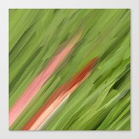 grass Canvas Prints featuring Grass by Paul Kimble
