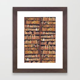 Books, books, books Framed Art Print