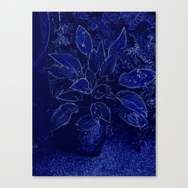 Hosta in Blue Canvas Print
