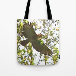 Red-tailed hawk in flight 57 Tote Bag