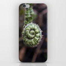 Fiddlehead III iPhone & iPod Skin