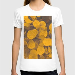 BRIGHT - PLANT - LEAVES - WITH - VEINS - GROWING - IN - GARDEN - PHOTOGRAPHY T-shirt