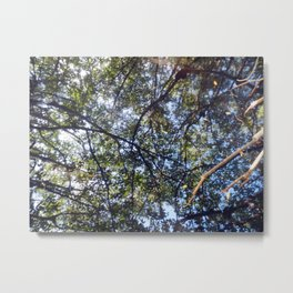 Branches, Too Metal Print