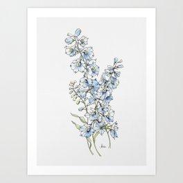 Blue Delphinium Flowers Art Print