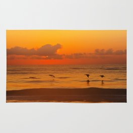 Four Pelican Sunrise Rug