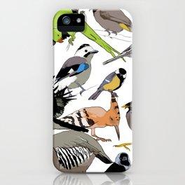 color birds iPhone Case