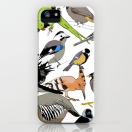 color birds iPhone Case