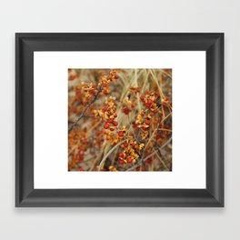 Fall's End Framed Art Print