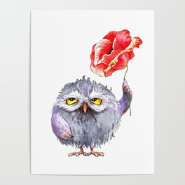 Owl and poppy Poster