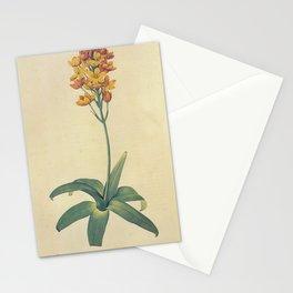 ornithogalum dubiu Redoute Roses m Stationery Cards