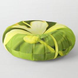 Worley's Butter Cream Senna Floor Pillow