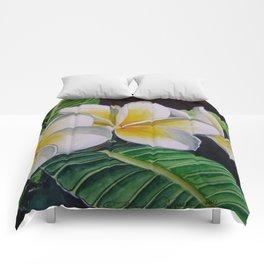 Polynesian Plumeria Comforters