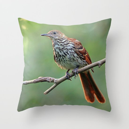 Return of a Friend Throw Pillow