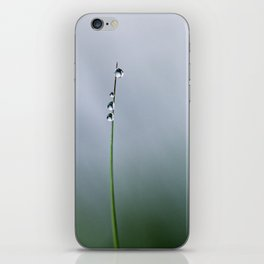 grass with drops iPhone Skin