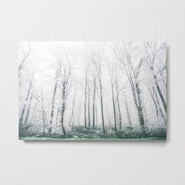 WHISPER WHITE Metal Print