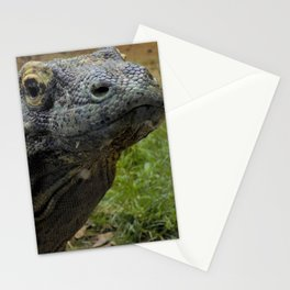 Ready for my Closeup Stationery Cards