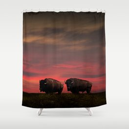 Two American Buffalo Bison at Sunset Shower Curtain