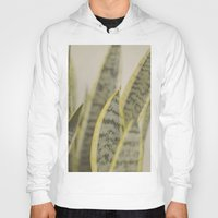leaves Hoodies featuring Leaves by Pure Nature Photos