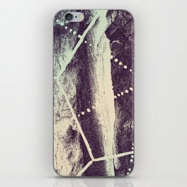 Fossil Story iPhone Skin