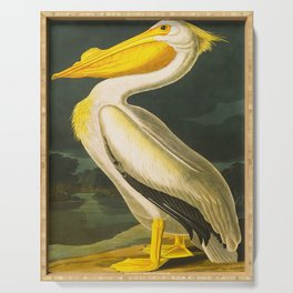 White Pelican John James Audubon Scientific Vintage Illustrations Of American Birds Serving Tray
