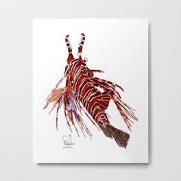 Spotfin Lionfish 2 Metal Print