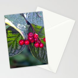 Poison or not : Red berries Stationery Cards