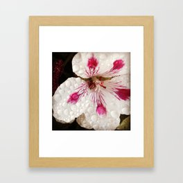 Flowers in the Summer Rain Framed Art Print