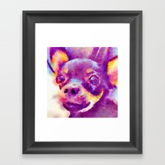 Lizzy (Chihuahua) Framed Art Print