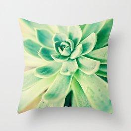 sweet succulents  Throw Pillow