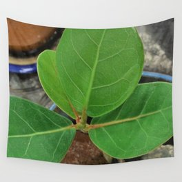 Baby Sea Grape Wall Tapestry