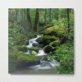 Summer Forest Brook Metal Print