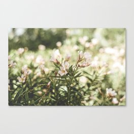 Flowers in my Hair Canvas Print