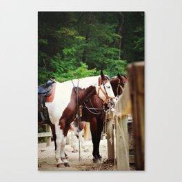 Horses Saddled Up Canvas Print