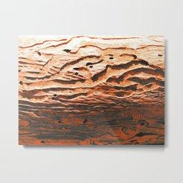 Vegetal Wrinkles Metal Print