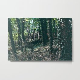 Secret Forest Metal Print