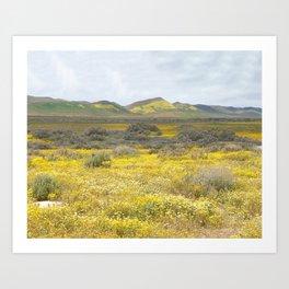 Mega Bloom Central California, Carrizo Plain National Monument Art Print