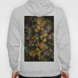 Autumn Forest - Aerial Photography Hoody