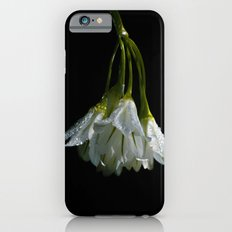 Wild Onion iPhone 6s Slim Case