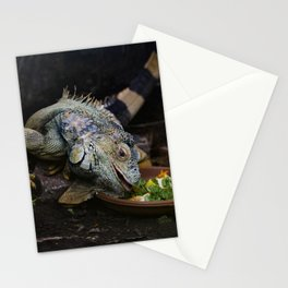 Lunchtime. Stationery Cards