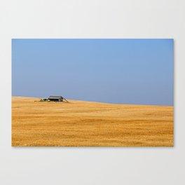 A Golden Field Canvas Print