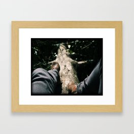 Over Troubled Waters Framed Art Print
